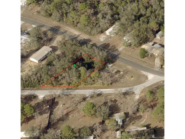5070 W Rolling View Place, Lecanto, FL 34461 (MLS #752125) :: Plantation Realty Inc.
