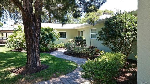 4205 S Eve Point, Homosassa, FL 34448 (MLS #757442) :: Plantation Realty Inc.