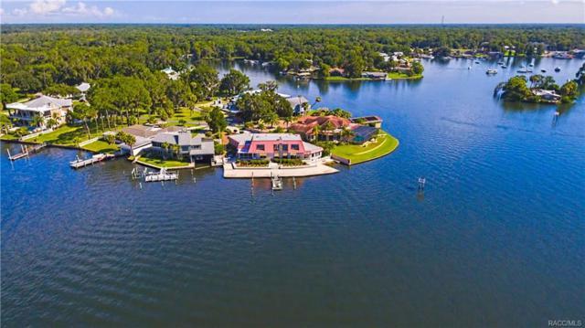 286 NW Magnolia Circle, Crystal River, FL 34428 (MLS #761538) :: Plantation Realty Inc.