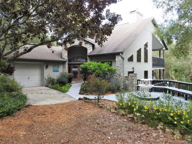 11531 N Hume Point, Dunnellon, FL 34434 (MLS #762074) :: Plantation Realty Inc.
