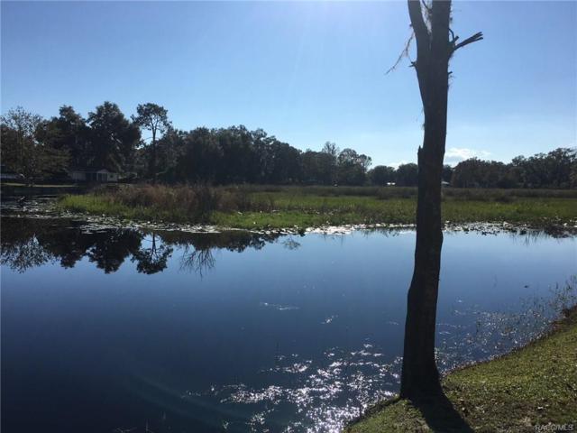 9209 E Beech Circle, Inverness, FL 34450 (MLS #765951) :: Plantation Realty Inc.