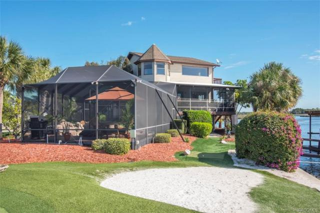12050 Coot Court, Crystal River, FL 34429 (MLS #766687) :: Plantation Realty Inc.