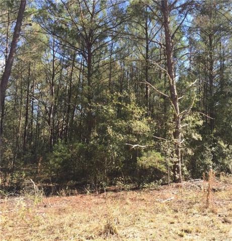 6227 N Treefarm Avenue, Beverly Hills, FL 34465 (MLS #768535) :: Plantation Realty Inc.