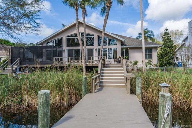 5135 S Running Brook Drive, Homosassa, FL 34448 (MLS #770582) :: Plantation Realty Inc.