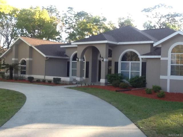 1287 N Annapolis Avenue, Hernando, FL 34442 (MLS #770692) :: Plantation Realty Inc.