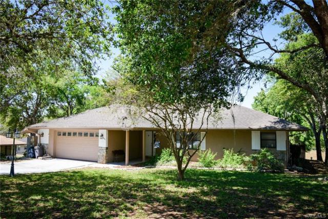 3481 S Winding Path, Inverness, FL 34450 (MLS #771233) :: Plantation Realty Inc.