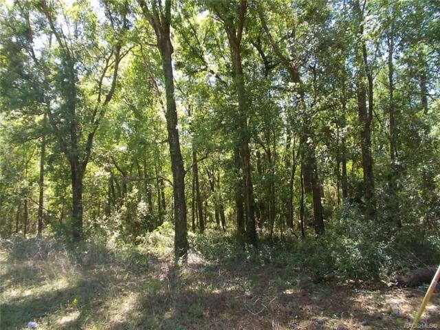 00000 SW 57th Street, Dunnellon, FL 34434 (MLS #771919) :: Plantation Realty Inc.