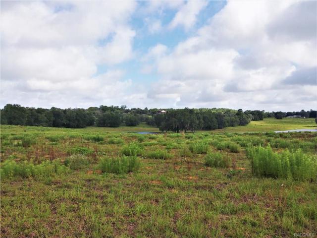 441 N Lake Shenandoah Loop, Inverness, FL 34453 (MLS #773470) :: Plantation Realty Inc.