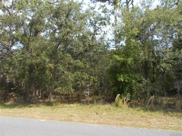 2087 E Marcia Street, Inverness, FL 34442 (MLS #773573) :: Plantation Realty Inc.
