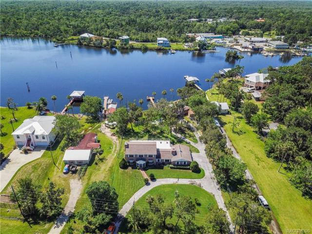 11082 W Halls River Road, Homosassa, FL 34448 (MLS #773912) :: Plantation Realty Inc.