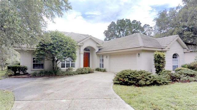 3744 W Augusta Path, Lecanto, FL 34461 (MLS #774173) :: Plantation Realty Inc.