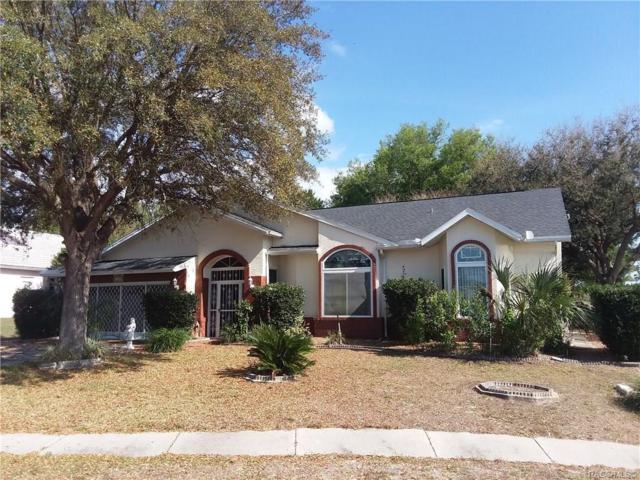 1405 S Chatsworth Point, Lecanto, FL 34461 (MLS #774453) :: Plantation Realty Inc.