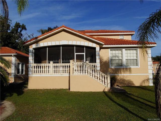 4780 S Polderland Way, Homosassa, FL 34448 (MLS #774857) :: Plantation Realty Inc.
