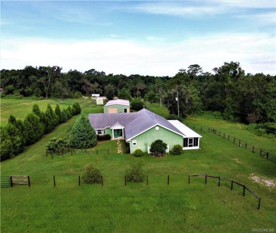 25755 Tilly Hawk Lane, Brooksville, FL 34602 (MLS #775642) :: Pristine Properties