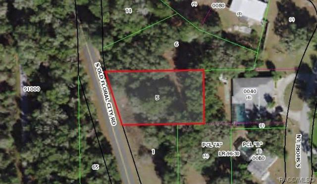 5245 S Old Floral City Road, Floral City, FL 34436 (MLS #776763) :: Plantation Realty Inc.