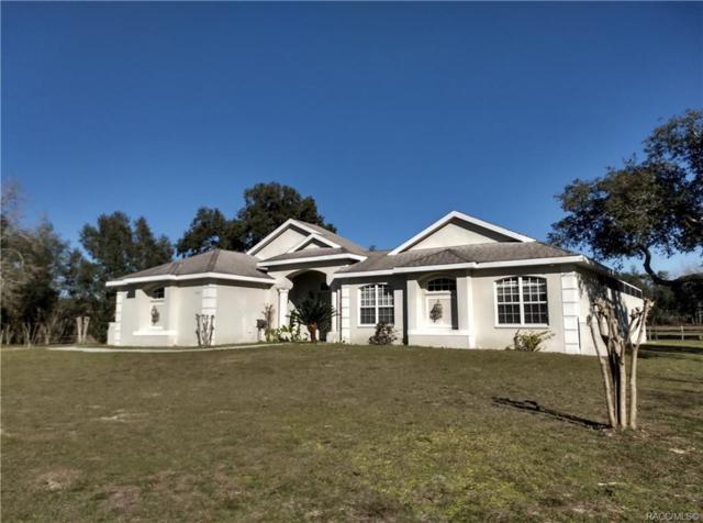 7347 S Elsie Point, Lecanto, FL 34461 (MLS #777422) :: Plantation Realty Inc.