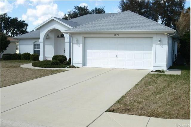 3875 E Arbor Lakes Drive, Hernando, FL 34442 (MLS #777745) :: Plantation Realty Inc.