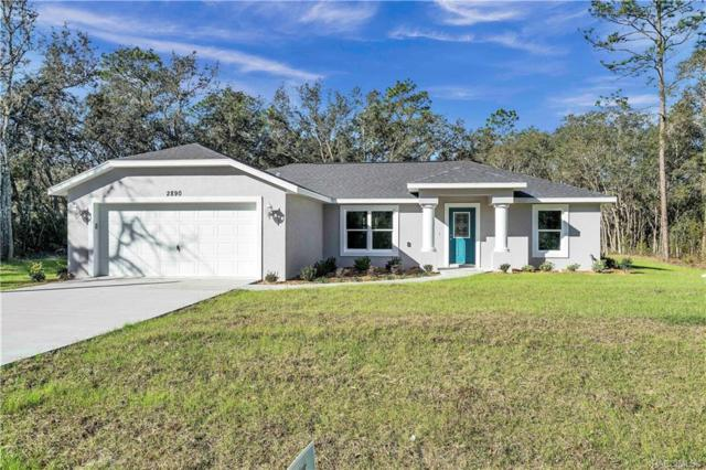 2890 S Coleman Avenue, Homosassa, FL 34448 (MLS #779301) :: Plantation Realty Inc.