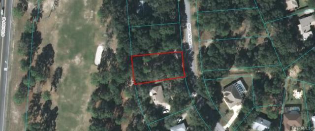 Lot 18 SW 197th Circle, Dunnellon, FL 34432 (MLS #779434) :: Plantation Realty Inc.