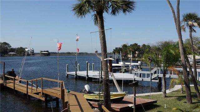5232 S Riverview Circle, Homosassa, FL 34448 (MLS #780874) :: Plantation Realty Inc.