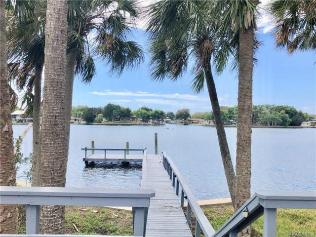 5260 Riverview, Homosassa, FL 34448 (MLS #781763) :: Plantation Realty Inc.