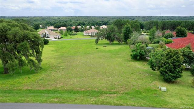 514 W Fenway Drive, Hernando, FL 34442 (MLS #782785) :: Pristine Properties