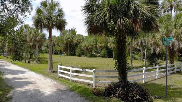 2274 S Dana Point, Homosassa, FL 34448 (MLS #782878) :: Plantation Realty Inc.