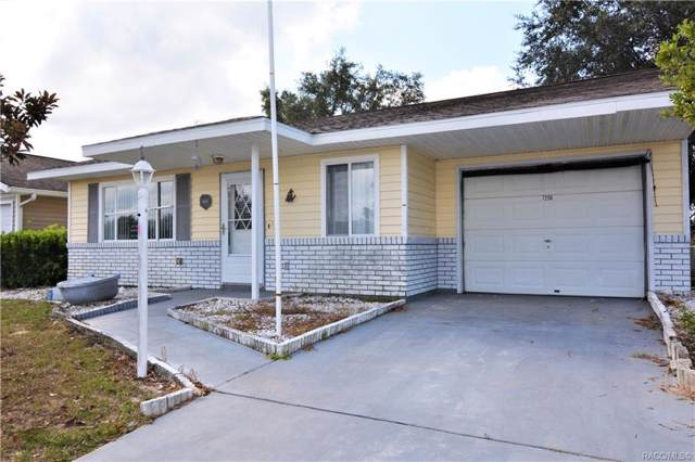 7256 E Cassidy Lane, Floral City, FL 34436 (MLS #786530) :: Plantation Realty Inc.