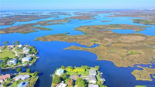 11889 W Coquina Court, Crystal River, FL 34429 (MLS #787712) :: Plantation Realty Inc.