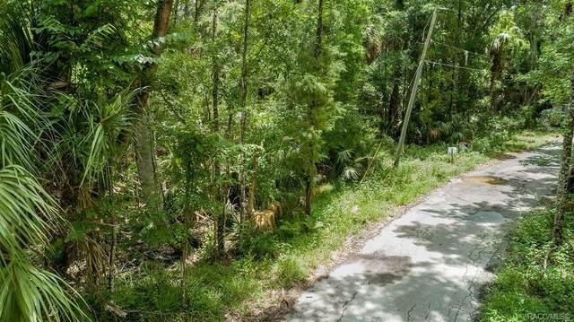 4465 S Lewoods Drive, Homosassa, FL 34448 (MLS #801979) :: Plantation Realty Inc.