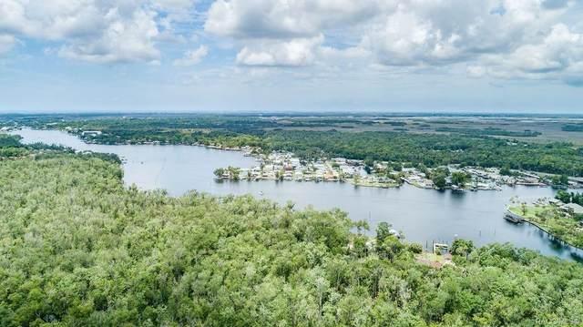 4485 S Lewoods Drive, Homosassa, FL 34448 (MLS #802050) :: Plantation Realty Inc.