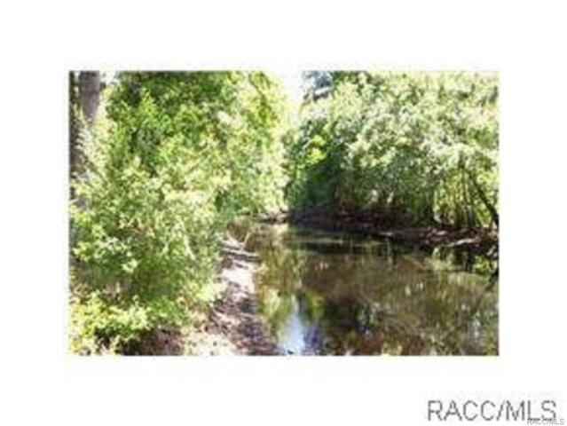 8204 Kimberly Circle, Floral City, FL 34436 (MLS #716904) :: Plantation Realty Inc.