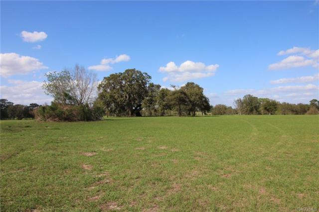 5094 E Lighthorse Circle, Inverness, FL 34452 (MLS #718913) :: Plantation Realty Inc.