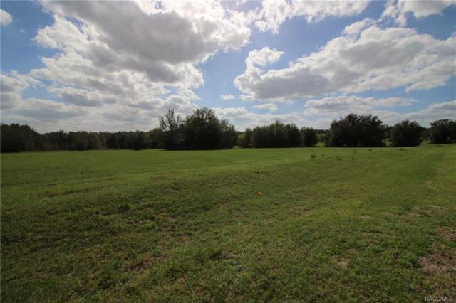 5280 E Lighthorse Circle, Inverness, FL 34452 (MLS #718915) :: Plantation Realty Inc.