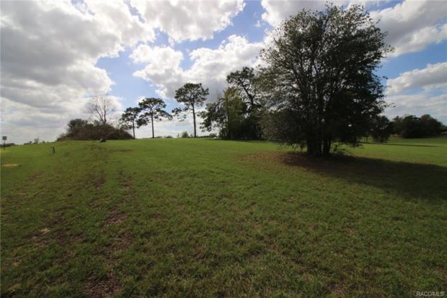 5279 E Lighthorse Circle, Inverness, FL 34452 (MLS #718918) :: Plantation Realty Inc.