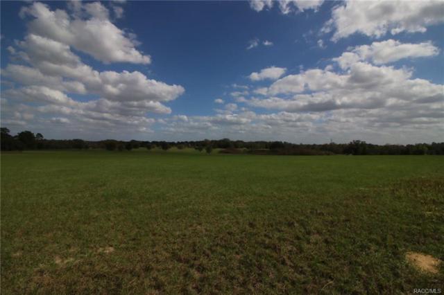 5301 E Lighthorse Circle, Inverness, FL 34452 (MLS #718919) :: Plantation Realty Inc.
