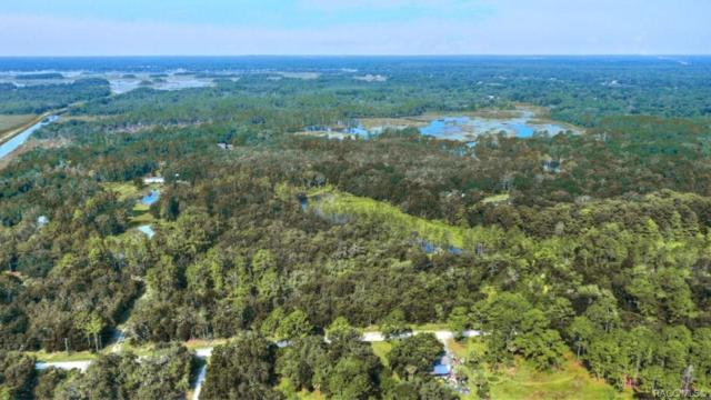 6520 N Nature Trail, Hernando, FL 34442 (MLS #725329) :: Pristine Properties