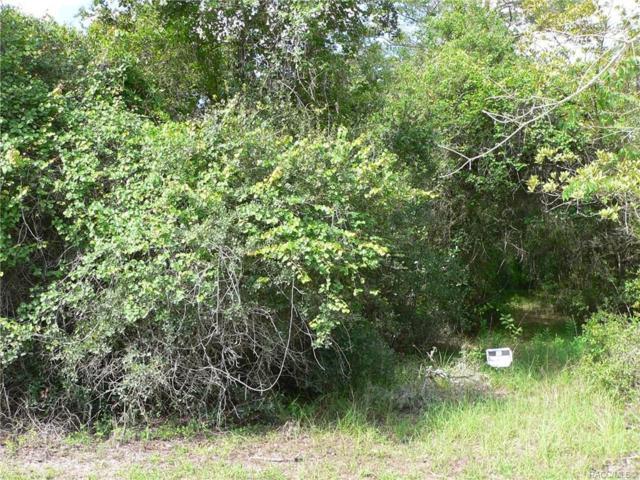 7435 N Nature Trail, Hernando, FL 34442 (MLS #760459) :: Pristine Properties
