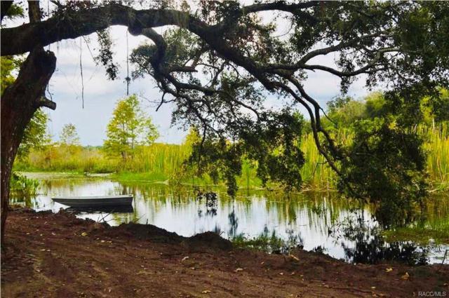 8721 E Greenock Drive, Inverness, FL 34450 (MLS #775622) :: Plantation Realty Inc.