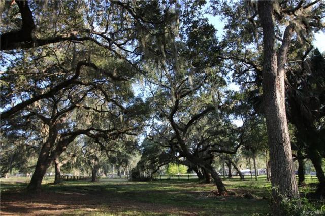 850 N Prairie Point, Inverness, FL 34450 (MLS #776858) :: Plantation Realty Inc.