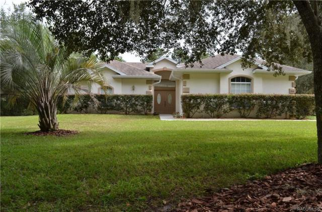 1800 E Tradewind Drive, Hernando, FL 34442 (MLS #777899) :: Plantation Realty Inc.