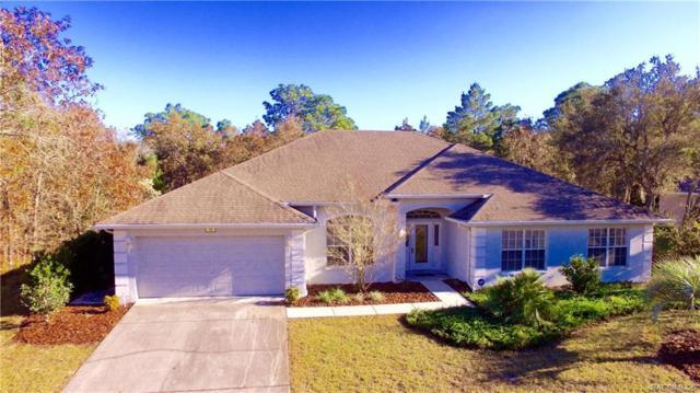 13 Vinca Street, Homosassa, FL 34446 (MLS #779002) :: Plantation Realty Inc.
