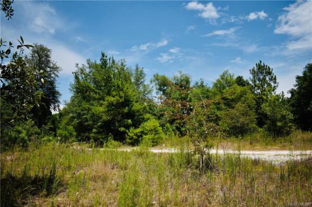 3941 E Peggy Street, Hernando, FL 34442 (MLS #783555) :: Plantation Realty Inc.