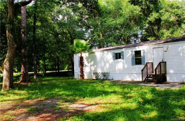 7804 N Brush Ter, Hernando, FL 34442 (MLS #783889) :: Pristine Properties