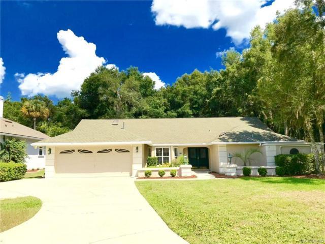 51 Greentree Street, Homosassa, FL 34446 (MLS #784081) :: Plantation Realty Inc.