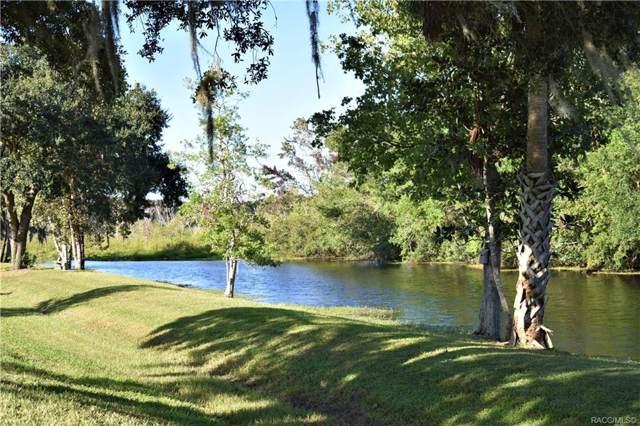 163 N Golf Harbor Path, Inverness, FL 34450 (MLS #786145) :: Plantation Realty Inc.