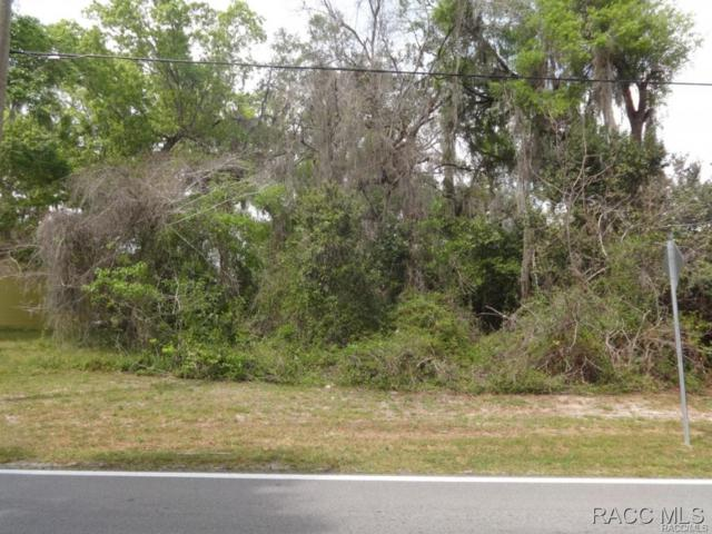 5497 S Withlapopka Drive, Floral City, FL 34436 (MLS #713599) :: Plantation Realty Inc.