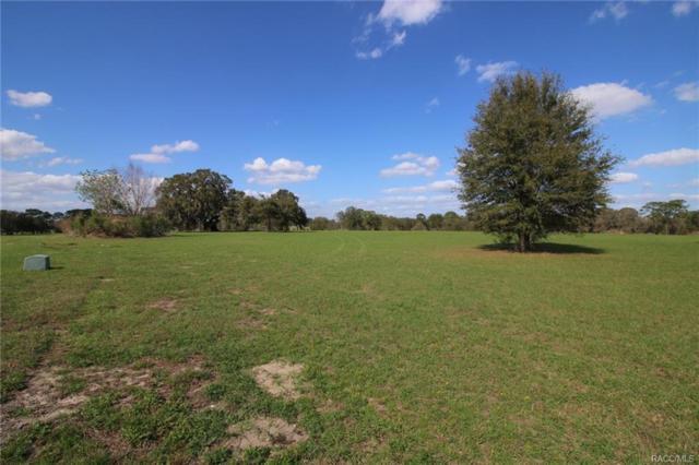 5323 E Lighthorse Circle, Inverness, FL 34452 (MLS #718920) :: Plantation Realty Inc.