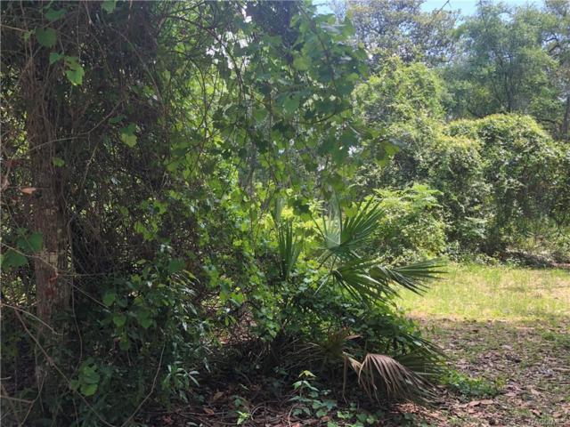 935/931 S Net Point, Inverness, FL 34450 (MLS #771525) :: Plantation Realty Inc.