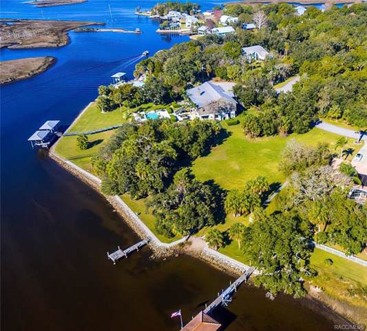 12258 W Restview Court, Homosassa, FL 34448 (MLS #774050) :: Plantation Realty Inc.